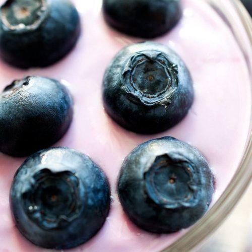 Blueberry-Pudding