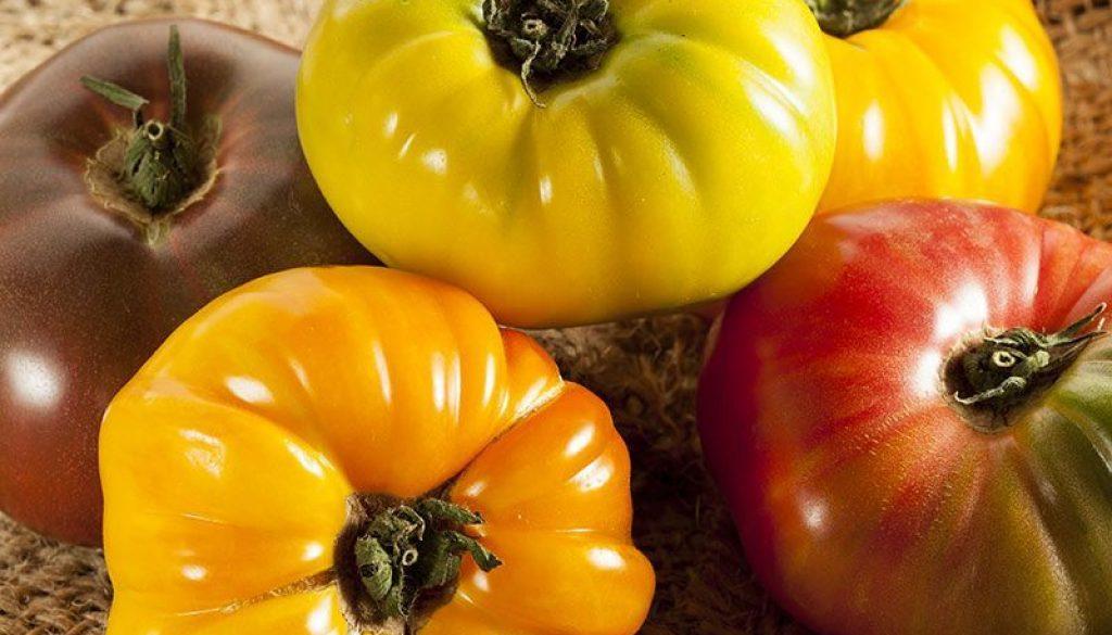 Rainbow-Heirloom-Tomato-Stacks-800